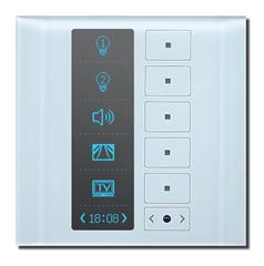 多功能触控面板(OLED型)